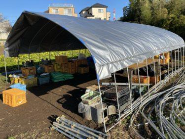 2020年1月9日(木)の作業記録 (今冬最大の収穫量 休憩所の屋根作り)