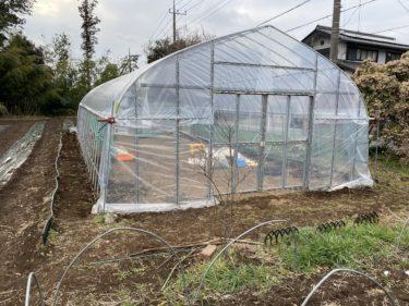 2020年2月26日(水)の作業記録 (鈴木さん畑ビニールハウスのシート張り等、小溝玉ねぎ畑で追肥作業)