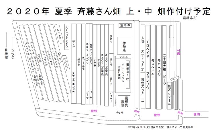 斉藤さん 上・下 畑 2020年夏季作付け予定図