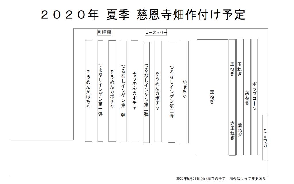 慈恩寺畑 2020年夏季作付け予定図