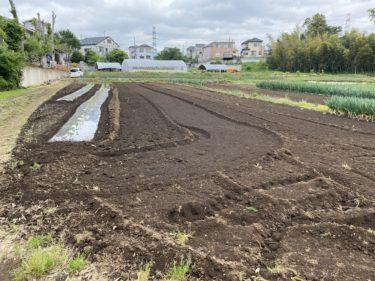 2020年5月11日(月)の作業記録 (吉岡さん畑ジャガイモ畝追肥と土寄せ、駐車場清掃)