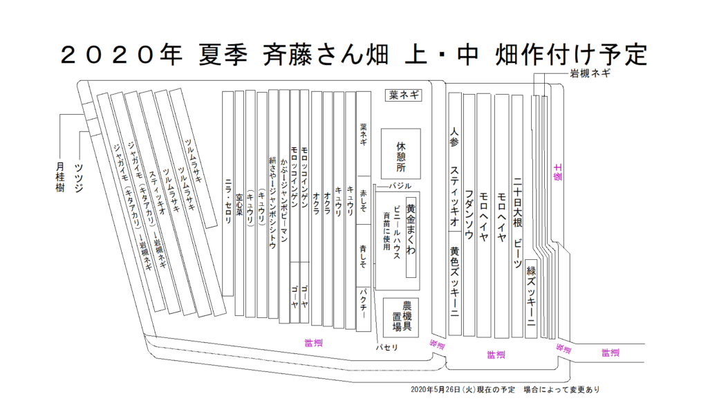 斉藤さん 下 畑 2020年夏季作付け予定図