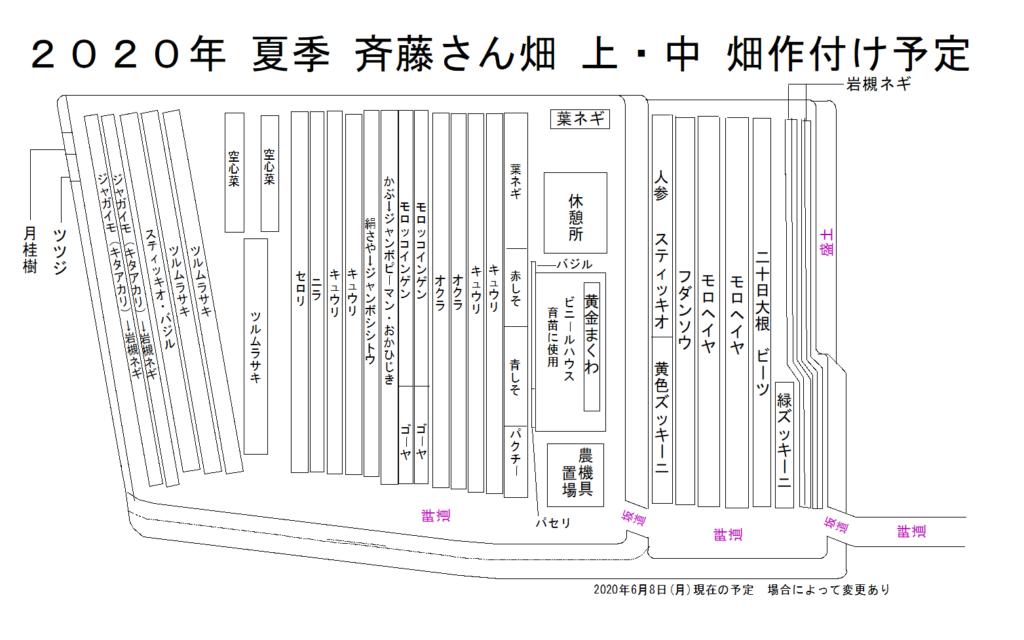 斉藤さん上・中の畑の作付け図を更新
