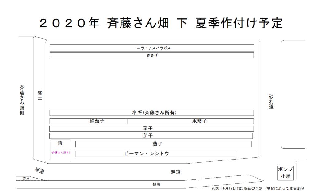 斉藤さん 下 畑 2020年夏季作付け予定図 2020年6月13日(土)更新