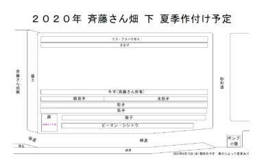 2020年夏季 作付け予定図(2020年6月13日(土)更新)
