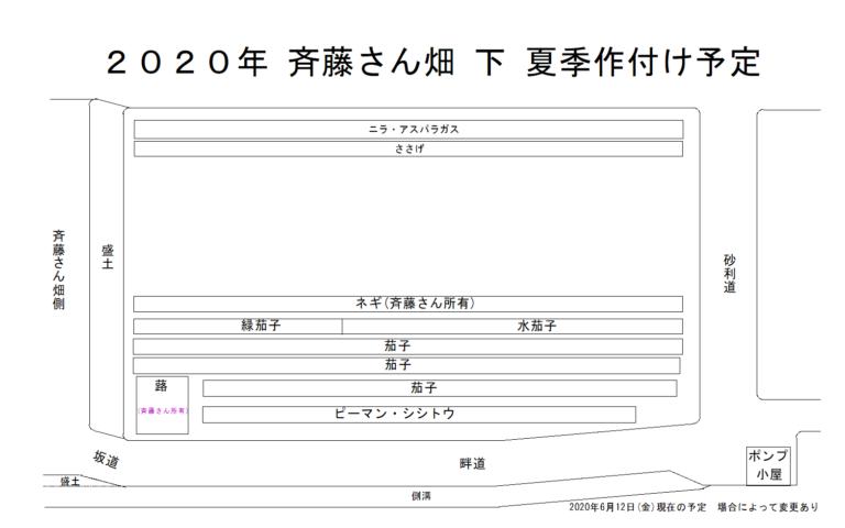 斉藤さん 下 畑 2020年夏季作付け予定図 慈恩寺畑 2020年夏季作付け予定図 2020年6月13日(土)更新