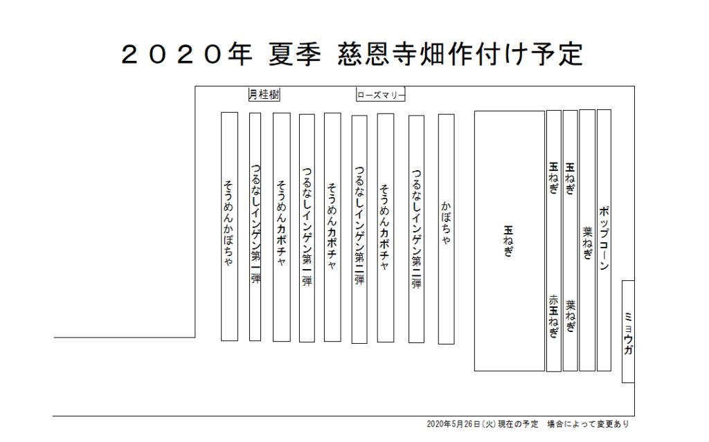 慈恩寺畑 2020年夏季作付け予定図 2020年6月13日(土)更新