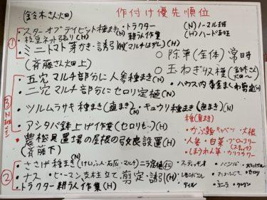 2020年6月12日(金)の作業記録 (ジャガイモ初収穫、鈴木さん畑の玉ねぎ整理回収作業、マルチ直し作業、キュウリの定植作業、畑ミーティング)