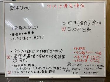 2020年6月19日(金)の作業記録 (玉ねぎ選別回収、畑ミーティング)