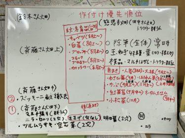2020年7月31日(金)の作業記録 (ジャガイモ掘り、畑ミーティング)