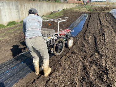 2020年11月4日(水)の作業記録 (移植機の試運転、鈴木さん畑で鶏糞と石灰を撒きトラクター耕耘作業)
