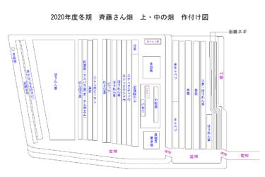 2020年度 冬期 斉藤さん畑の作付け図