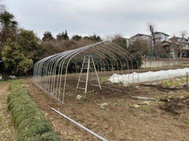 2021年1月15日(金)の作業記録 (斉藤さん畑の下の畑に休憩所設置作業開始、ほうれん草の水やり等)