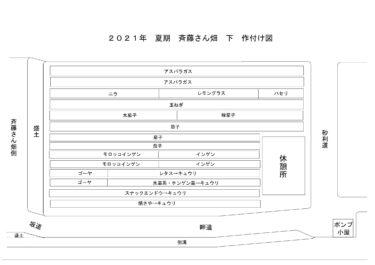 2021年2月4日(木)の作業記録 (斉藤さん中畑の休憩所の片付けラベル貼り、畑作業ミーティング)