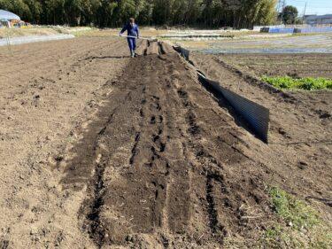 2021年2月24日(水)の作業記録 (小溝玉ねぎ畑で玉ねぎの追肥作業、斉藤さん畑の中の畑でメークインの定植作業)
