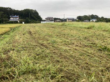 2021年9月1日(水)の作業記録 (小溝畑の除草作業)